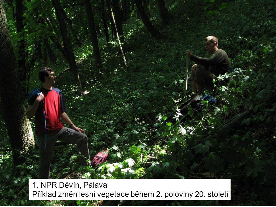 1. NPR Děvín, Pálava Příklad změn lesní vegetace během 2. poloviny 20. století