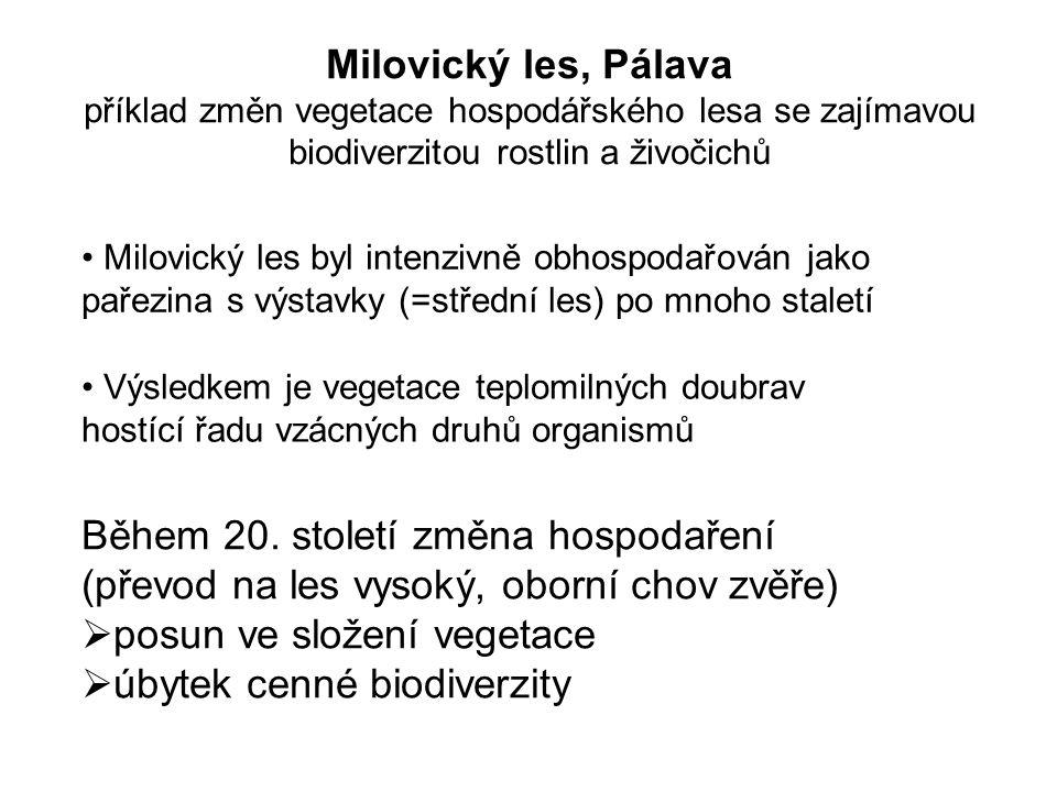 Milovický les byl intenzivně obhospodařován jako pařezina s výstavky (=střední les) po mnoho staletí Během 20.