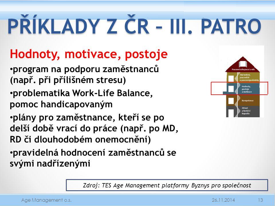 PŘÍKLADY Z ČR – III. PATRO Hodnoty, motivace, postoje program na podporu zaměstnanců (např. při přílišném stresu) problematika Work-Life Balance, pomo