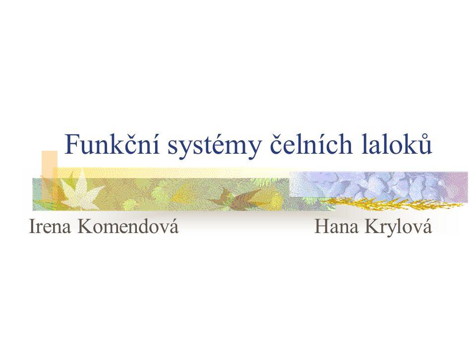 Funkční systémy čelních laloků Irena KomendováHana Krylová
