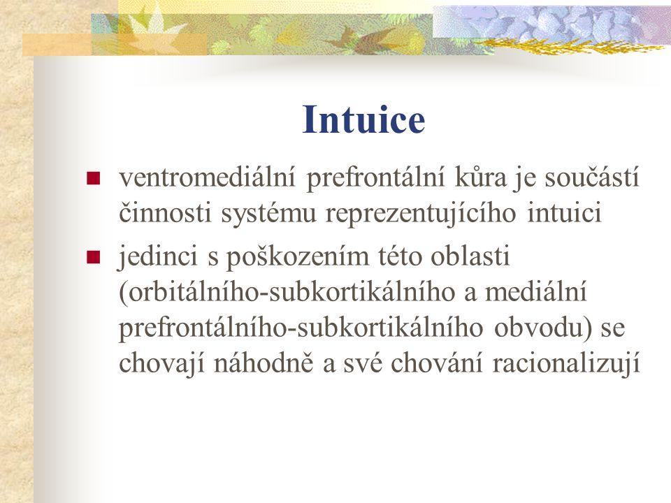 Intuice ventromediální prefrontální kůra je součástí činnosti systému reprezentujícího intuici jedinci s poškozením této oblasti (orbitálního-subkorti