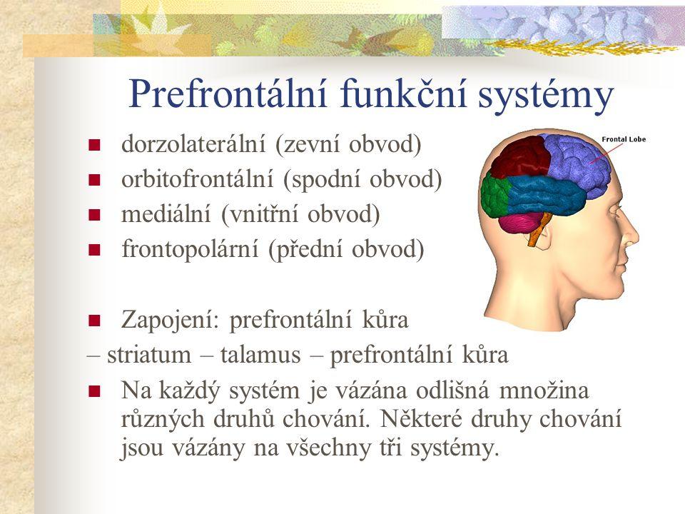 Prefrontální funkční systémy dorzolaterální (zevní obvod) orbitofrontální (spodní obvod) mediální (vnitřní obvod) frontopolární (přední obvod) Zapojen