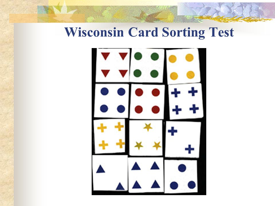 Wisconsin Card Sorting Test