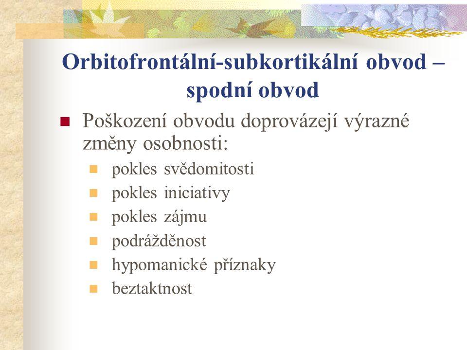 Orbitofrontální kůra