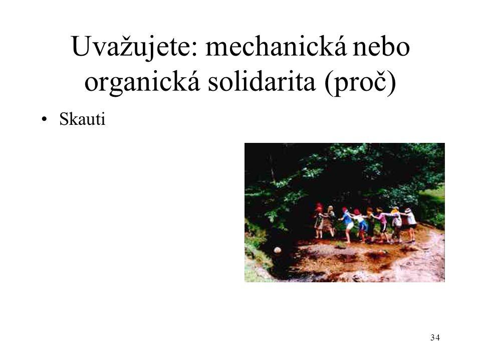 33 Uvažujete: mechanická nebo organická solidarita (proč) Politická strana