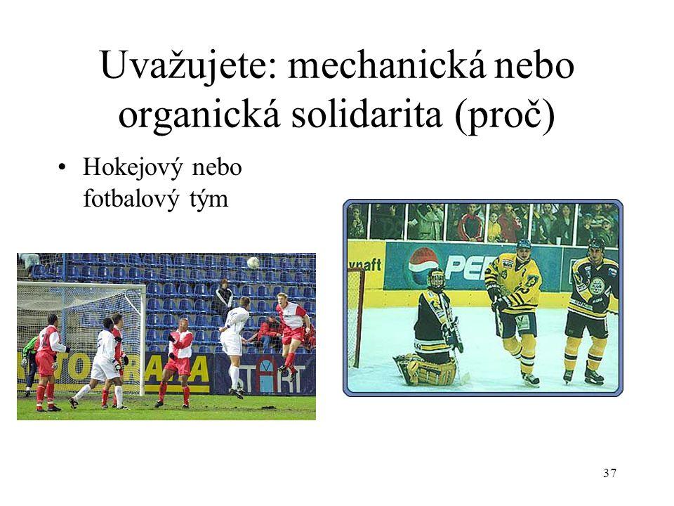 36 Uvažujete: mechanická nebo organická solidarita (proč) Fanoušci - chuligáni