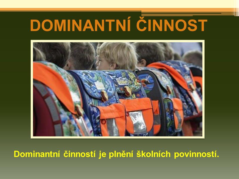 DOMINANTNÍ ČINNOST Dominantní činností je plnění školních povinností.