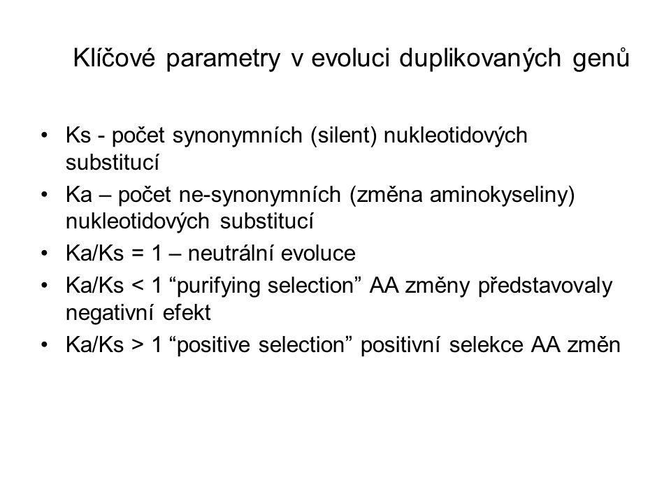 Ks - počet synonymních (silent) nukleotidových substitucí Ka – počet ne-synonymních (změna aminokyseliny) nukleotidových substitucí Ka/Ks = 1 – neutrální evoluce Ka/Ks < 1 purifying selection AA změny představovaly negativní efekt Ka/Ks > 1 positive selection positivní selekce AA změn Klíčové parametry v evoluci duplikovaných genů