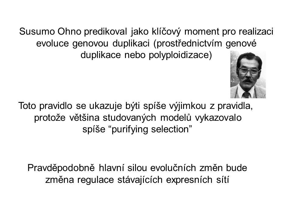 Susumo Ohno predikoval jako klíčový moment pro realizaci evoluce genovou duplikaci (prostřednictvím genové duplikace nebo polyploidizace) Toto pravidl