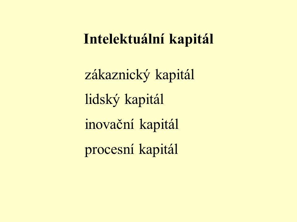Lidský kapitál - kompetence lidí (znalosti, dovednosti), postoje lidí (motivace, chování, etika prostředí), agilita Strukturální kapitál vztahy (zákaz