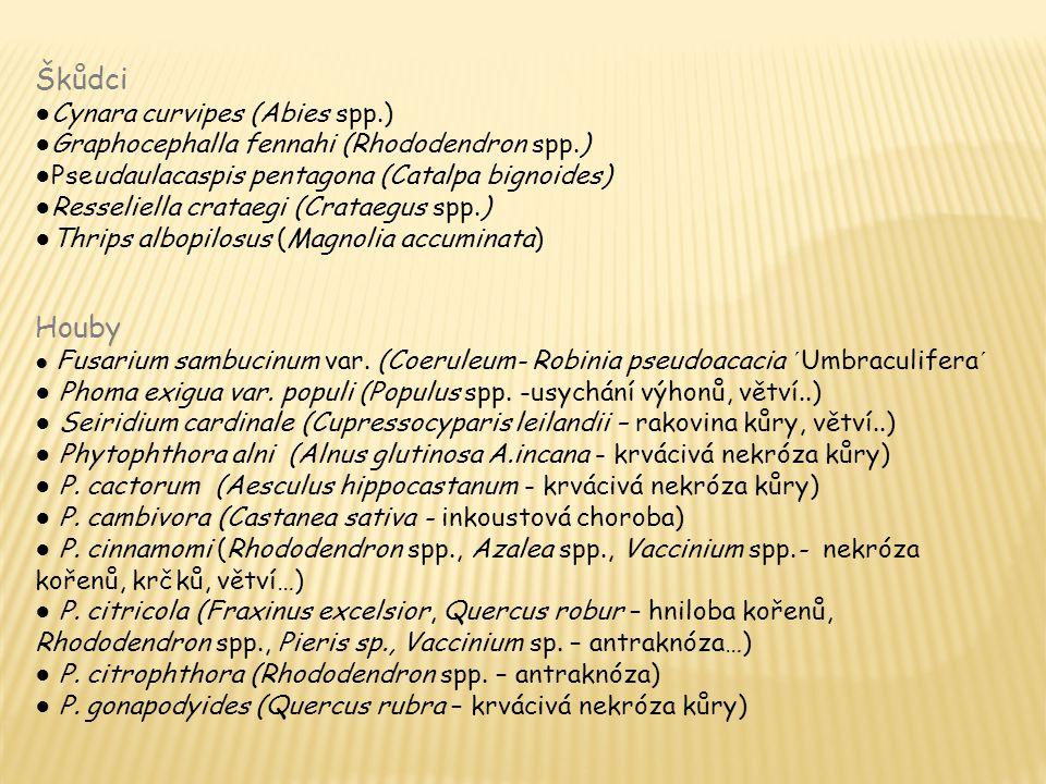 Škůdci ● Cynara curvipes (Abies spp.) ● Graphocephalla fennahi (Rhododendron spp.) ● Pseudaulacaspis pentagona (Catalpa bignoides) ● Resseliella crataegi (Crataegus spp.) ● Thrips albopilosus (Magnolia accuminata) Houby ● Fusarium sambucinum var.