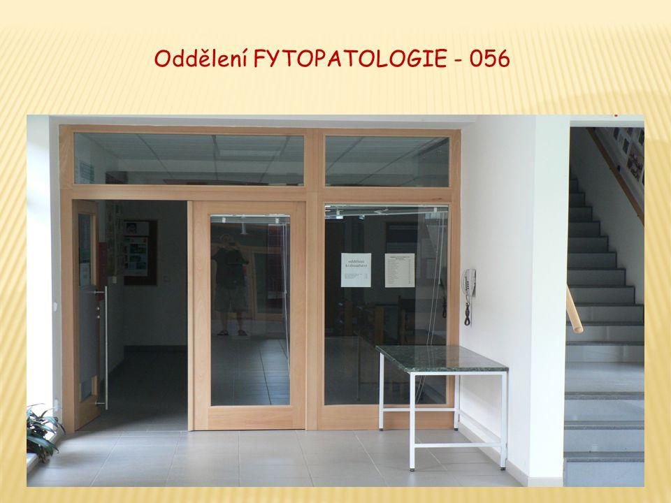 Oddělení FYTOPATOLOGIE - 056