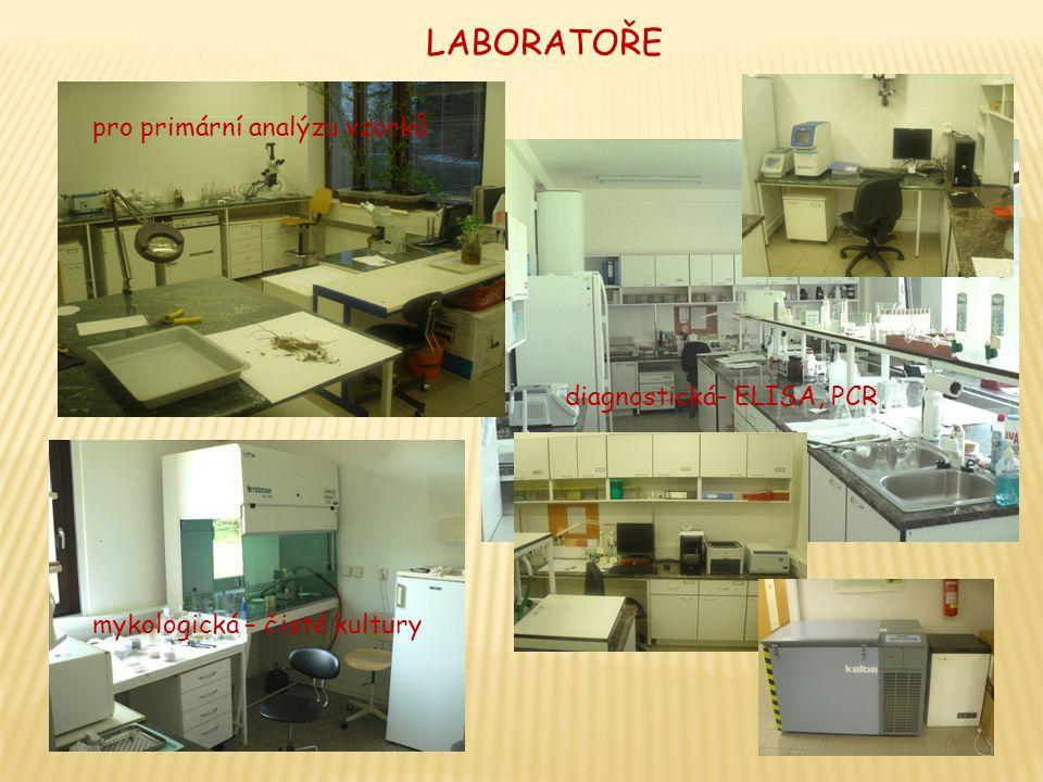 LABORATOŘE diagnostická– ELISA, PCR mykologická – čisté kultury pro primární analýzu vzorků