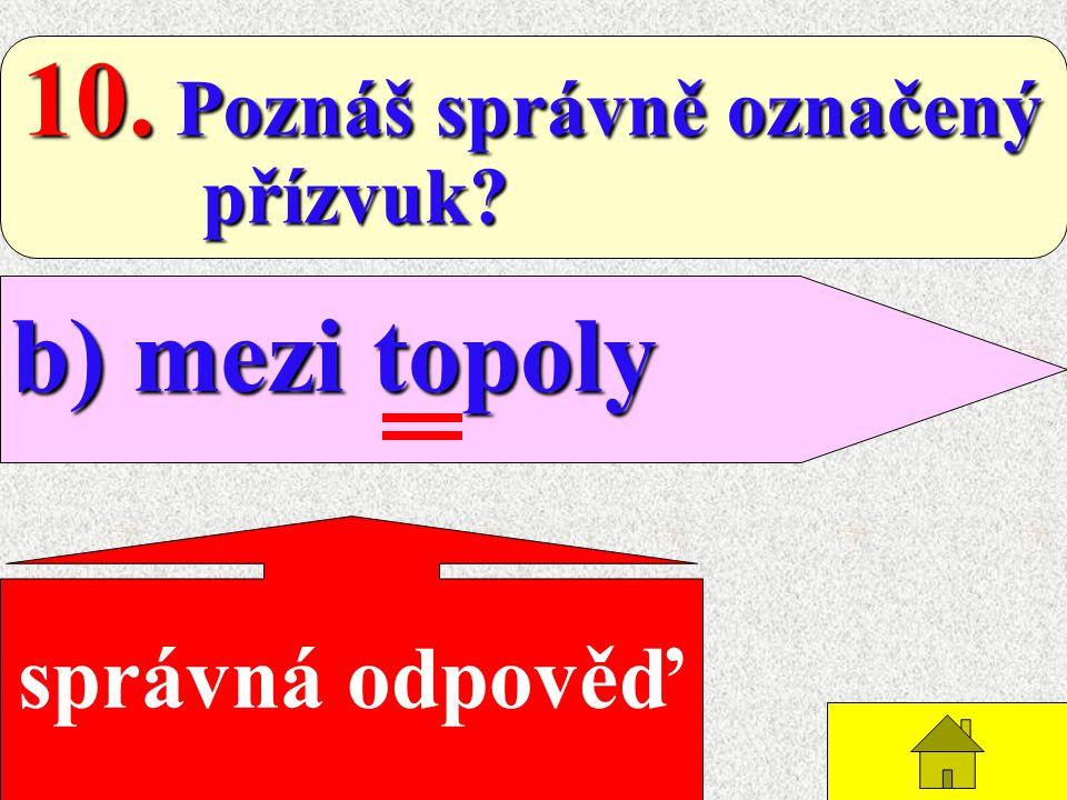 9. Ve spojení jednoslabičné předložky s následujícím slovem: b) přízvuk se přesouvá na předložku na předložku správná odpověď