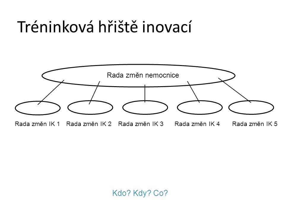 """Interní konzultant Trenér, kouč interních inovací """"procesu"""