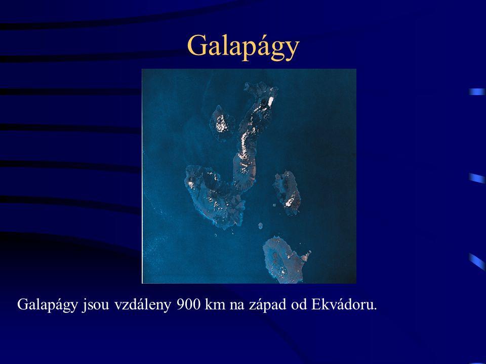 Galapágy Galapágy jsou vzdáleny 900 km na západ od Ekvádoru.