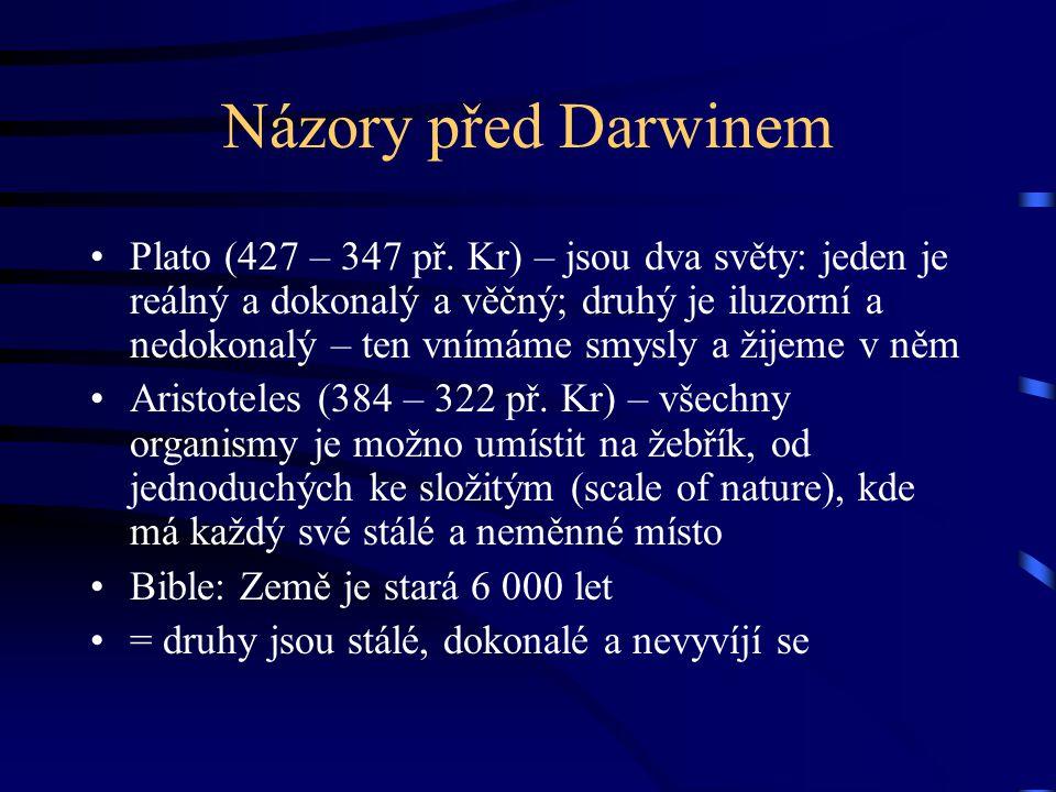 Názory před Darwinem Plato (427 – 347 př.