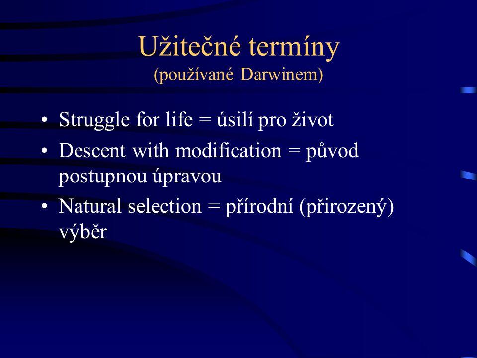 Užitečné termíny (používané Darwinem) Struggle for life = úsilí pro život Descent with modification = původ postupnou úpravou Natural selection = přír