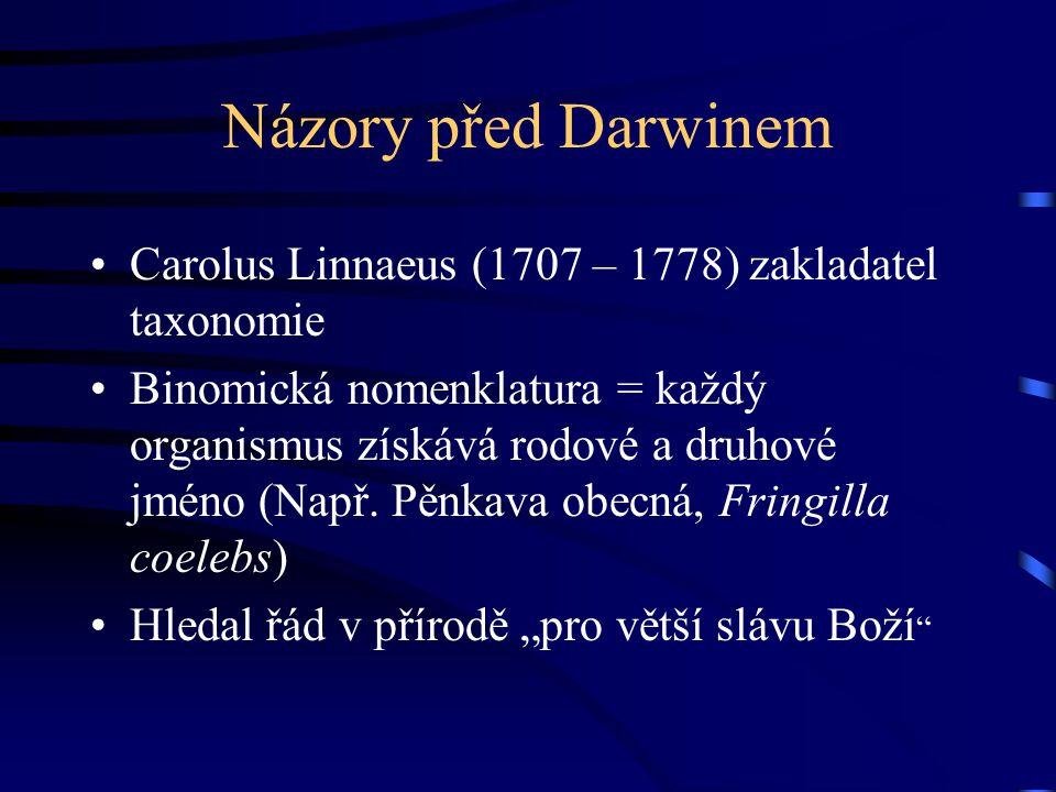 Názory před Darwinem Carolus Linnaeus (1707 – 1778) zakladatel taxonomie Binomická nomenklatura = každý organismus získává rodové a druhové jméno (Nap