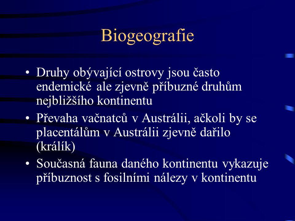 Biogeografie Druhy obývající ostrovy jsou často endemické ale zjevně příbuzné druhům nejbližšího kontinentu Převaha vačnatců v Austrálii, ačkoli by se placentálům v Austrálii zjevně dařilo (králík) Současná fauna daného kontinentu vykazuje příbuznost s fosilními nálezy v kontinentu