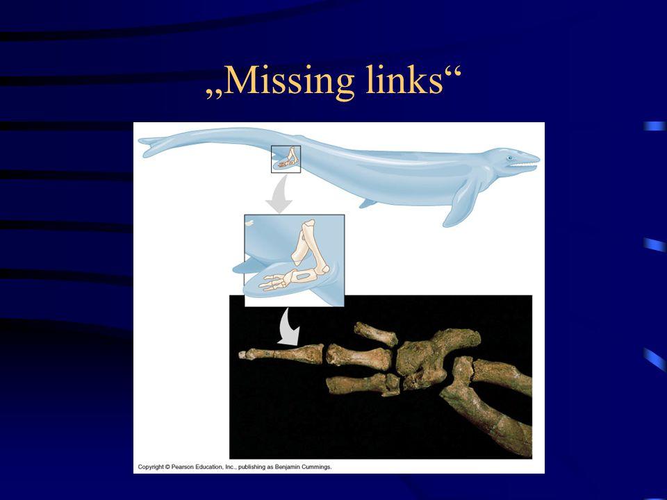 """""""Missing links"""