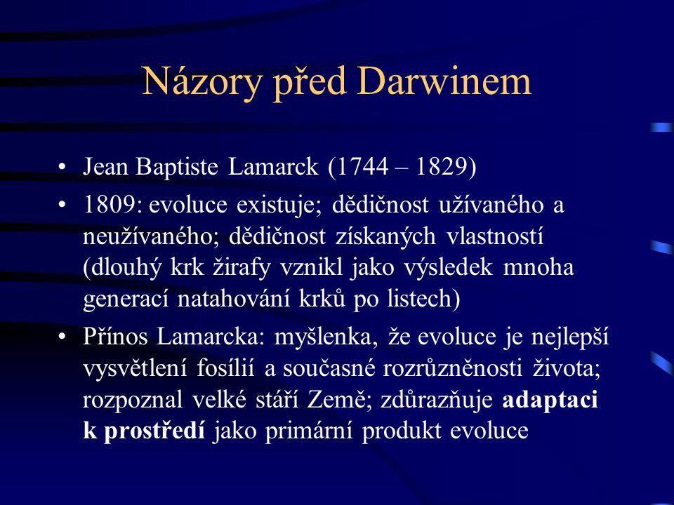 Názory před Darwinem Jean Baptiste Lamarck (1744 – 1829) 1809: evoluce existuje; dědičnost užívaného a neužívaného; dědičnost získaných vlastností (dlouhý krk žirafy vznikl jako výsledek mnoha generací natahování krků po listech) Přínos Lamarcka: myšlenka, že evoluce je nejlepší vysvětlení fosílií a současné rozrůzněnosti života; rozpoznal velké stáří Země; zdůrazňuje adaptaci k prostředí jako primární produkt evoluce