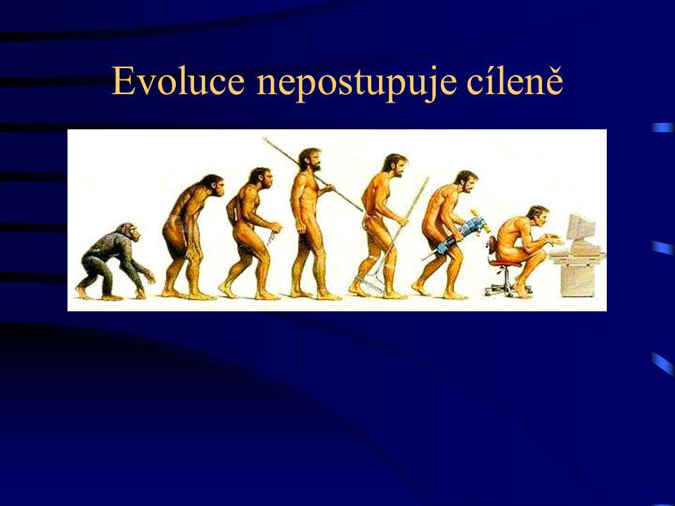 Evoluce nepostupuje cíleně
