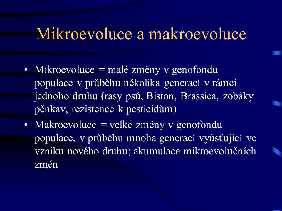 Mikroevoluce a makroevoluce Mikroevoluce = malé změny v genofondu populace v průběhu několika generací v rámci jednoho druhu (rasy psů, Biston, Brassica, zobáky pěnkav, rezistence k pesticidům) Makroevoluce = velké změny v genofondu populace, v průběhu mnoha generací vyúsťující ve vzniku nového druhu; akumulace mikroevolučních změn