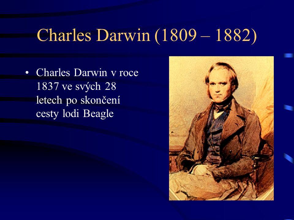 Charles Darwin (1809 – 1882) Charles Darwin v roce 1837 ve svých 28 letech po skončení cesty lodi Beagle