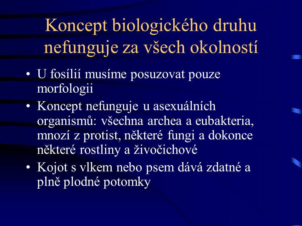 Koncept biologického druhu nefunguje za všech okolností U fosílií musíme posuzovat pouze morfologii Koncept nefunguje u asexuálních organismů: všechna