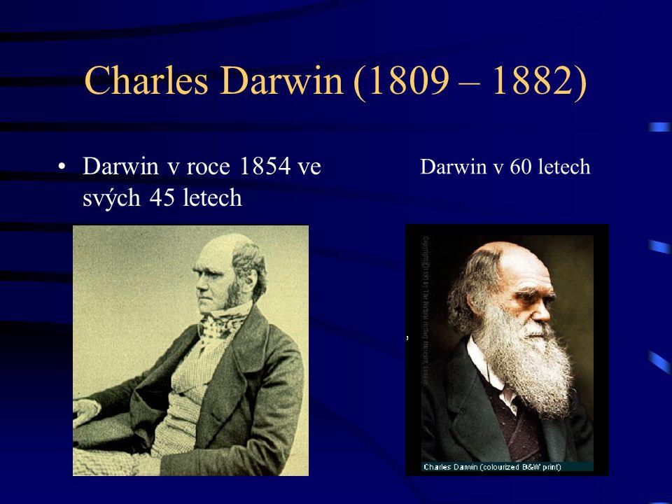 Charles Darwin (1809 – 1882) Darwin v roce 1854 ve svých 45 letech Darwin v 60 letech