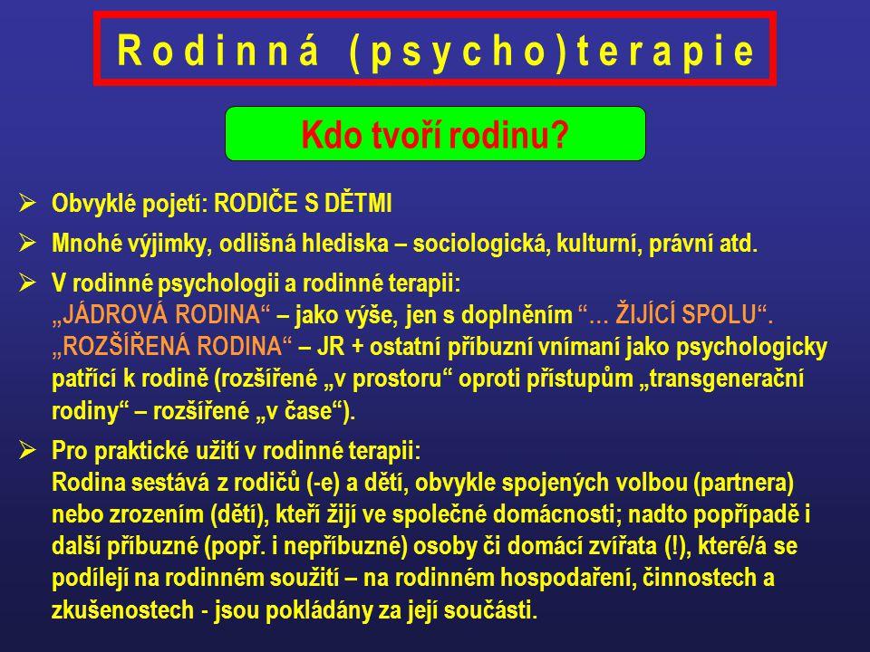 Psychoanalytické rodinné terapie (např.