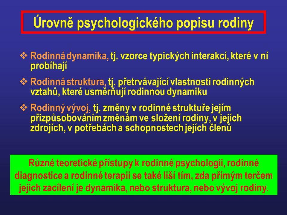 Úrovně psychologického popisu rodiny  Rodinná dynamika, tj. vzorce typických interakcí, které v ní probíhají  Rodinná struktura, tj. přetrvávající v