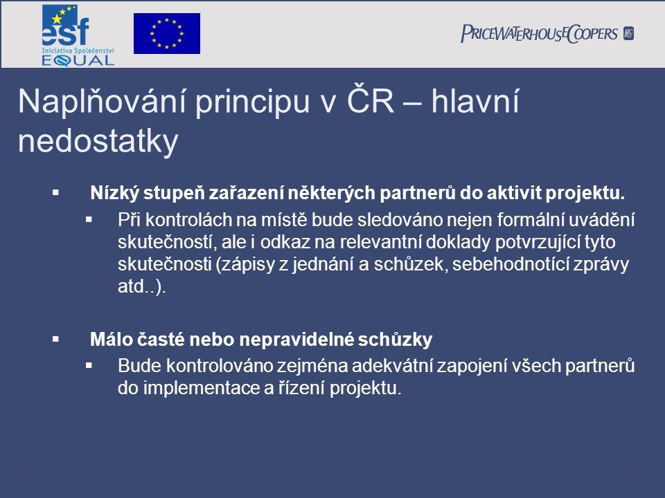 PricewaterhouseCoopers Date Page 16 Naplňování principu v ČR – hlavní nedostatky  Nízký stupeň zařazení některých partnerů do aktivit projektu.  Při