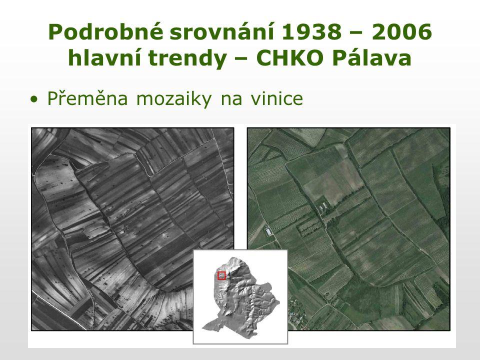 Podrobné srovnání 1938 – 2006 hlavní trendy – CHKO Pálava Přeměna mozaiky na vinice
