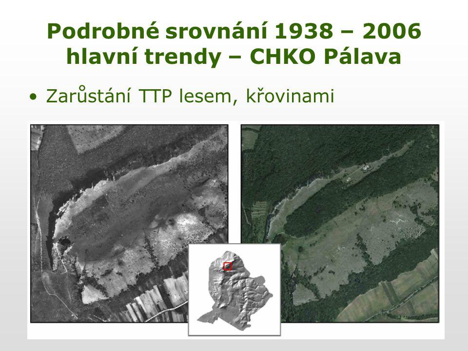 Podrobné srovnání 1938 – 2006 hlavní trendy – CHKO Pálava Zarůstání TTP lesem, křovinami