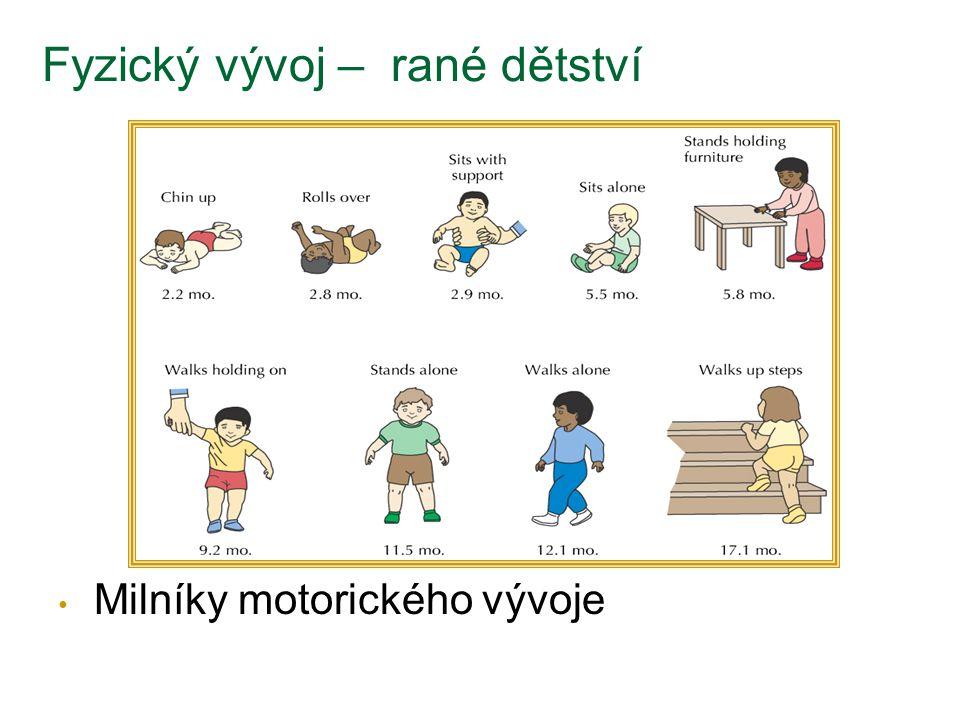 Fyzický vývoj – rané dětství Milníky motorického vývoje