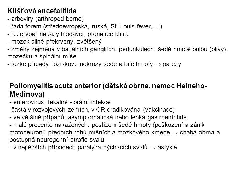 Klíšťová encefalitida - arboviry (arthropod borne) - řada forem (středoevropská, ruská, St.