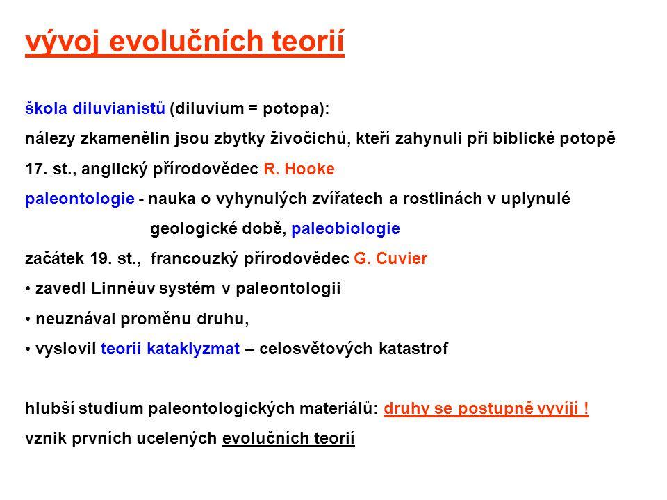 vývoj evolučních teorií škola diluvianistů (diluvium = potopa): nálezy zkamenělin jsou zbytky živočichů, kteří zahynuli při biblické potopě 17. st., a