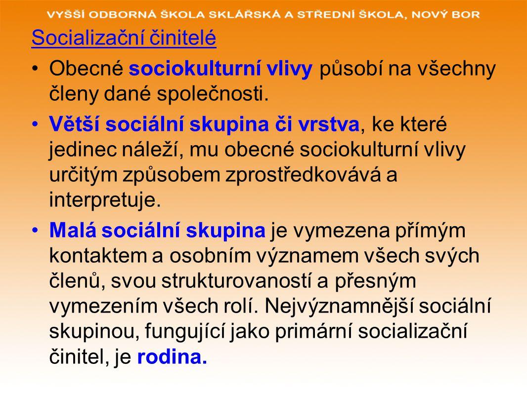 Socializační činitelé Obecné sociokulturní vlivy působí na všechny členy dané společnosti. Větší sociální skupina či vrstva, ke které jedinec náleží,