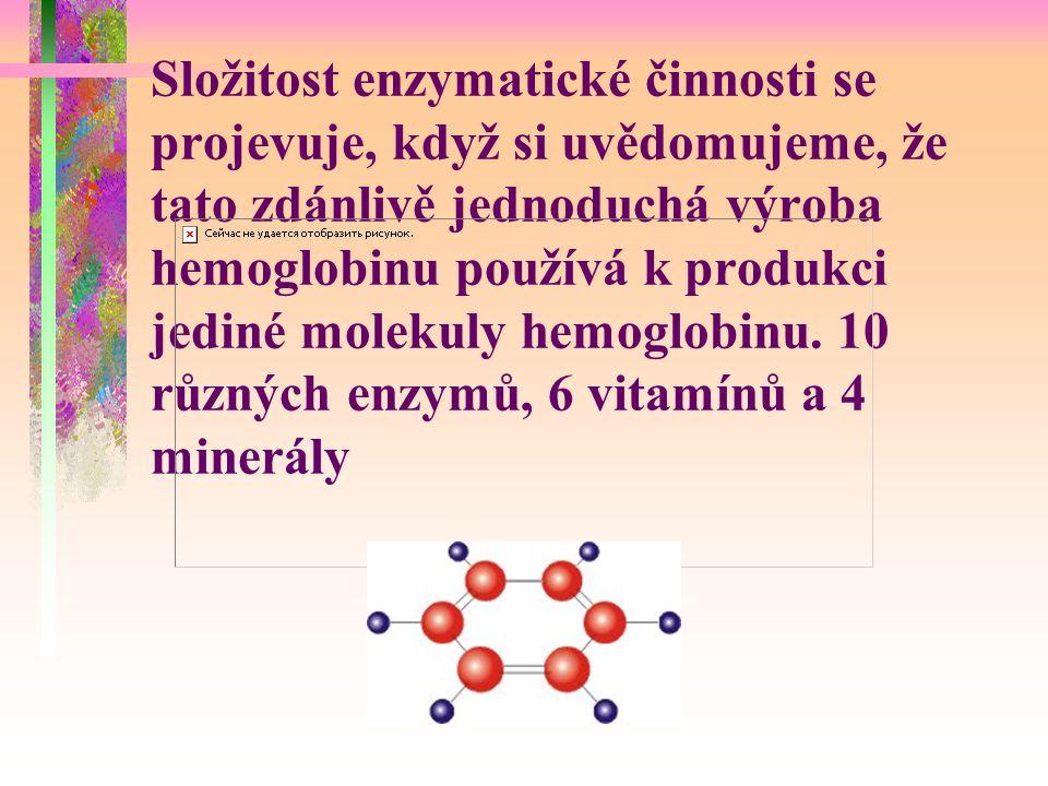 Složitost enzymatické činnosti se projevuje, když si uvědomujeme, že tato zdánlivě jednoduchá výroba hemoglobinu používá k produkci jediné molekuly hemoglobinu.