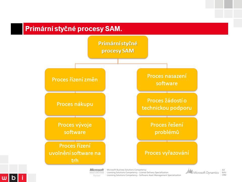 Primární styčné procesy SAM.