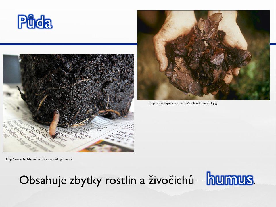 http://cs.wikipedia.org/wiki/Soubor:Compost.jpg http://www.fertilesoilsolutions.com/tag/humus/