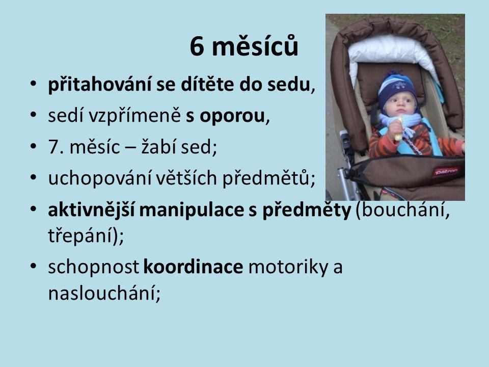 6 měsíců přitahování se dítěte do sedu, sedí vzpřímeně s oporou, 7. měsíc – žabí sed; uchopování větších předmětů; aktivnější manipulace s předměty (b