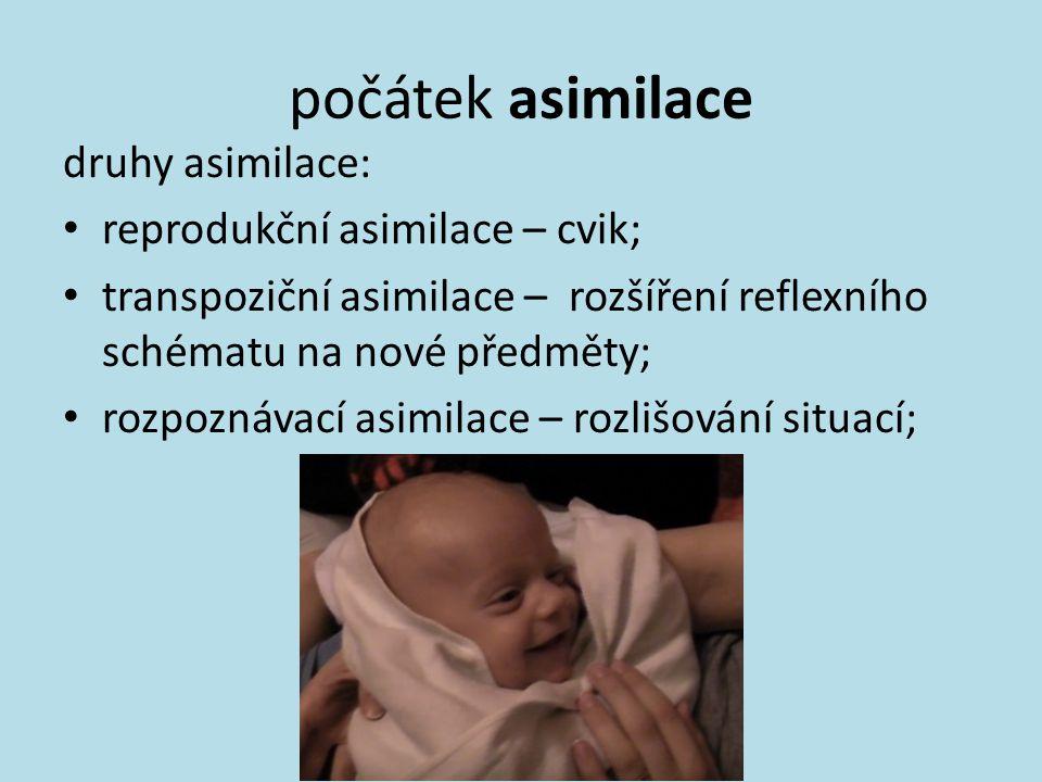 počátek asimilace druhy asimilace: reprodukční asimilace – cvik; transpoziční asimilace – rozšíření reflexního schématu na nové předměty; rozpoznávací