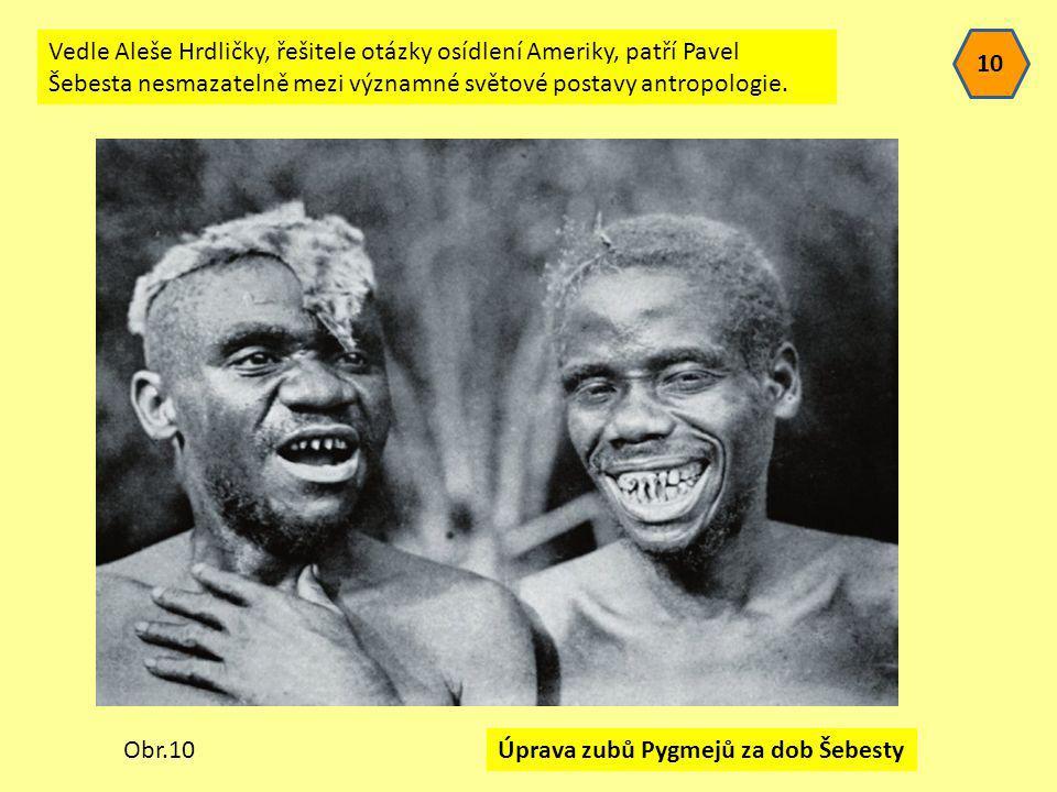 Úprava zubů Pygmejů za dob Šebesty 10 Obr.10 Vedle Aleše Hrdličky, řešitele otázky osídlení Ameriky, patří Pavel Šebesta nesmazatelně mezi významné sv