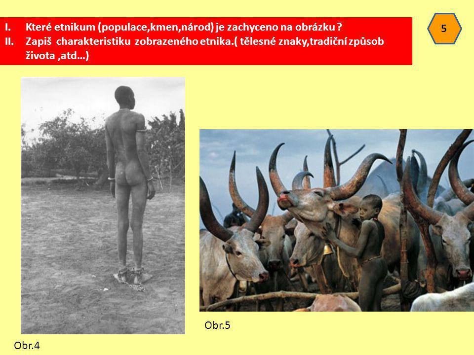 5 I.Které etnikum (populace,kmen,národ) je zachyceno na obrázku ? II.Zapiš charakteristiku zobrazeného etnika.( tělesné znaky,tradiční způsob života,a