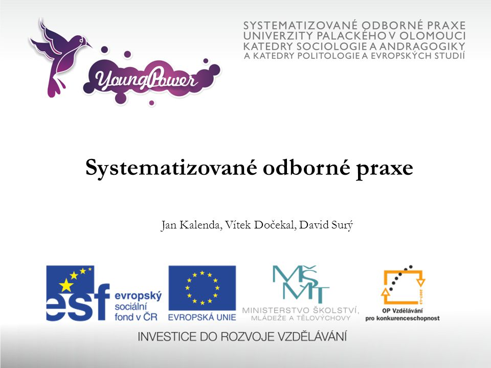 Systematizované odborné praxe Jan Kalenda, Vítek Dočekal, David Surý