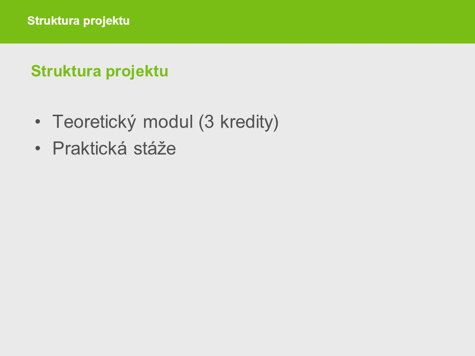 Struktura projektu Teoretický modul (3 kredity) Praktická stáže Struktura projektu