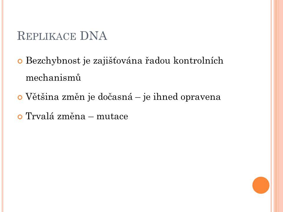 R EPLIKACE DNA Bezchybnost je zajišťována řadou kontrolních mechanismů Většina změn je dočasná – je ihned opravena Trvalá změna – mutace